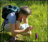 Taking photos of orchid in Donegal, Ireland